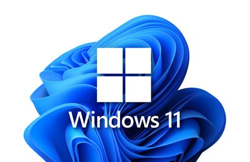 Microsoft-11